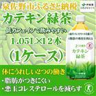 B574 【ふるさと納税】 2つの働きカテキン緑茶PET1.05L