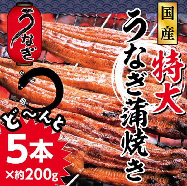 【ふるさと納税】31nek002 ふんわり♪やわらか♪うなぎ蒲焼き5本(220g程度×5本)