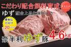 【ふるさと納税】31N784b こだわり配合飼料育成!もっちり食感!奈半利ゆず豚満喫セット(4.6kg程度)