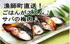 【ふるさと納税】31sato002y 漁師町からお届け♪ごはんがススム!サバの梅肉250g♪
