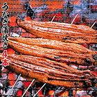 【ふるさと納税】31una1104 うなぎ蒲焼き4本(110g程度×4本)