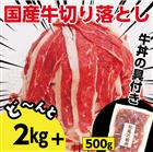 【ふるさと納税】kan172 ドカンと2.5kg!国産牛切り落とし2kg&牛丼の具500g 寄付額11,000円
