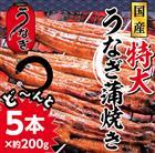 【ふるさと納税】nek002 ふんわり♪やわらか♪特大うなぎ蒲焼き5本(180~200g程度×5本)