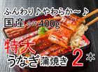 【ふるさと納税】31ra039 うなぎを1年間堪能!うなぎ蒲焼き2本(220g程度/本)×12ヶ月