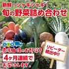 【ふるさと納税】31ve002 新鮮!シャキシャキ!旬の野菜詰め合わせコース(4ヶ月連続発送!!)