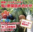 【ふるさと納税】31ve003 新鮮!シャキシャキ!旬の野菜詰め合わせコース(年12回 毎月発送!!)