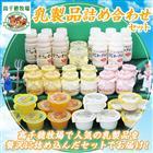【ふるさと納税】高千穂牧場乳製品詰め合わせ