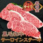 【ふるさと納税】都城産黒毛和牛サーロインステーキ1.2kg