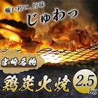 【ふるさと納税】宮崎名物鶏炭火焼2.5kgセット