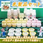 【ふるさと納税】高千穂牧場乳製品セット