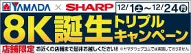 ヤマダ×シャープ8K誕生キャンペーン
