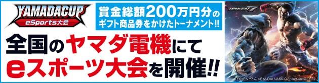 ヤマダカップ e-sports大会