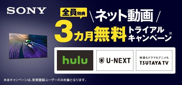 ソニー ネット動画3ヵ月無料トライアルキャンペーン