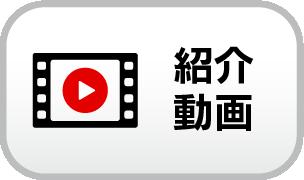 ac_video_fu_off.png