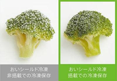 冷凍保存したブロッコリーの比較