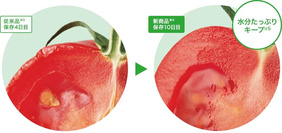 トマトの乾燥比較