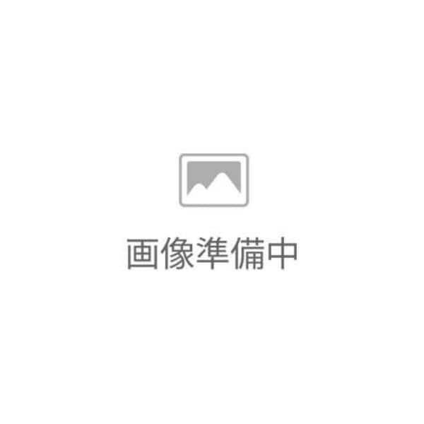 CD 台湾語基本単語2000 2枚組