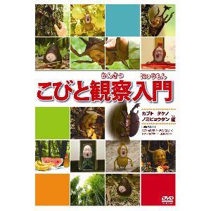 こびと観察入門 カブト タケノ ノミビョウタン編 【DVD】