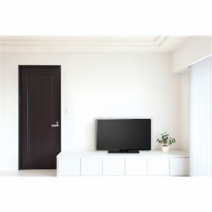 FUNAI FL-40H1010 40V型 地上・BS・110度CSデジタル フルビジョン液晶テレビ