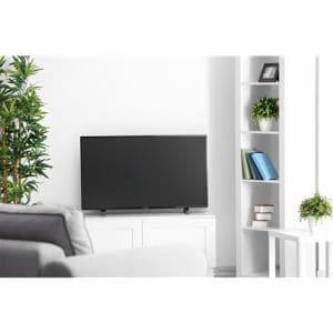 フナイ FL-50U3010 FUNAI FL-50U3010 50V型 地上・BS・110度CSデジタル 4K対応 LED液晶テレビ