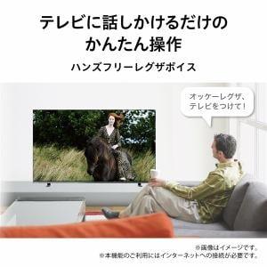 東芝映像ソリューション 55X8400 有機ELテレビ レグザ 55V型