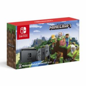 Nintendo Switch Minecraftセット HAC-S-KAAGE