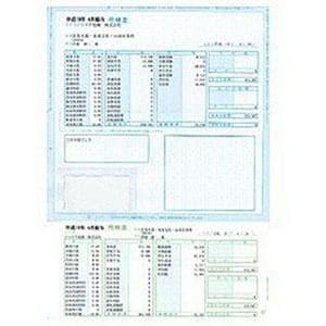 ソリマチ 給与・賞与明細書 封筒型 (100枚) SR2111