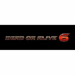 DEAD OR ALIVE 6 コレクターズエディション PS4 KTGS-40433