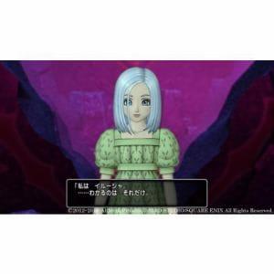 ドラゴンクエストX いばらの巫女と滅びの神 オンライン Nintendo Switch版 SE-W 0030