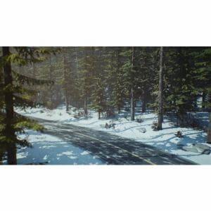 ライフ イズ ストレンジ 2 PS4 PLJM-16570