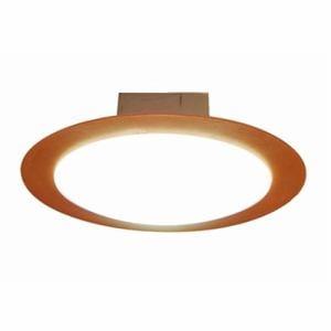 スワン CE-1004NA LED小型シーリング 昼白色