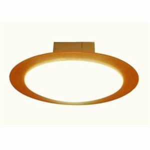 スワン CE-1005NA LED小型シーリング 電球色