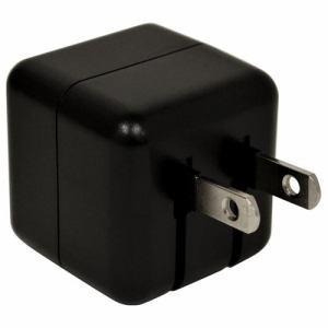 ラスタバナナ RACC2A01BK AC充電器 Type-Cポート 2.4A ブラック