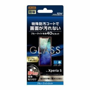 レイ・アウト Xperia 5 ガラス 防埃 10H ブルーライトカット ソーダガラス RT-XP5F/BSMG