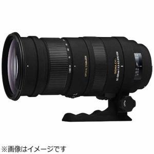 シグマ 交換レンズ APO 50-500mm F4.5-6.3 DG OS HSM (ニコンFマウント)