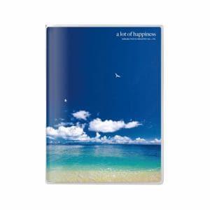ハクバ Pポケットアルバム NP 2Lサイズ 20枚収納 海と鳥 APNP-2L20-UTT