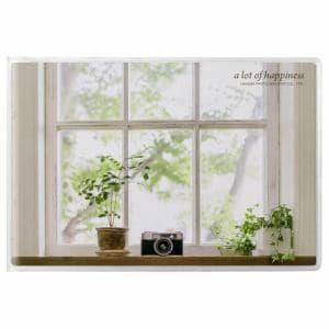 ハクバ APNP-KGY-MCM ハクバ Pポケットアルバム NP ポストカードサイズ 横 20枚収納(窓辺のカメラ)