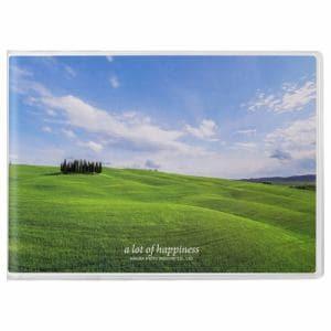 ハクバ APNP-2LY-AZO ハクバ Pポケットアルバム NP 2Lサイズ 横 20枚収納(青空の丘)