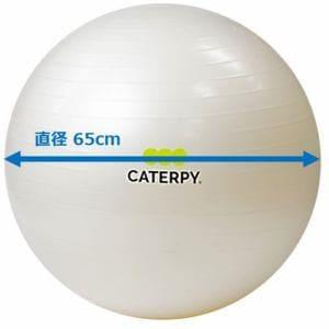 CATERPY CF-009 フィットネスボール65cm パールホワイト