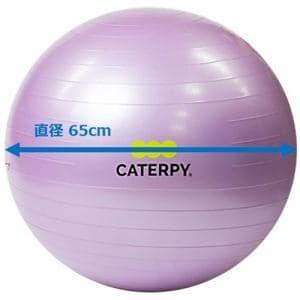 CATERPY CF-010 フィットネスボール65cm バイオレット