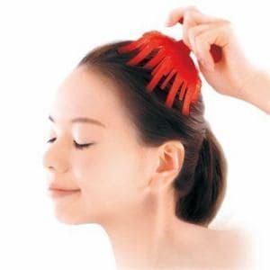 サンパック 活髪習慣 レッド やわらかブラシ マッサージでじんわり血行促進 気になるはえぎわ つむじに