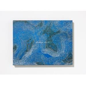<CD> サカナクション / 834.194(完全生産限定盤B)(DVD付)