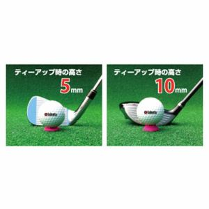 タバタ GV-1410 オクティーショート5&10 【ティー】 オクティーショート5&10