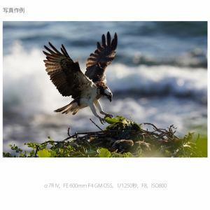 ソニー ILCE-7RM4 ミラーレス一眼カメラ α(アルファ)