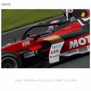 ソニー ILCE-6600M デジタル一眼カメラ α(アルファ) 高倍率ズームレンズキット  ブラック