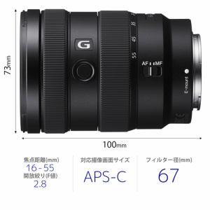 交換用レンズ ソニー SONY SEL1655G デジタル一眼カメラα Eマウント 用 レンズ カメラレンズ