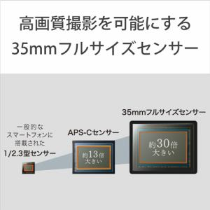 ソニー ILCE-7C S α7C ミラーレス一眼カメラ ボディ シルバー