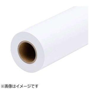 エプソン EPPP6436 普通紙ロール(薄手・914mm×50m・2本入り)