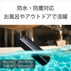 ソニー SRS-XB22 H ワイヤレススピーカー   H