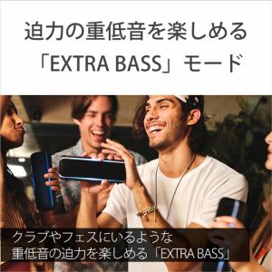 ソニー SRS-XB22 L ワイヤレススピーカー   L
